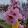 천사아가's profile photo
