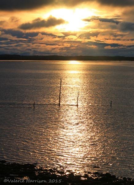 Sunset-Cree-4