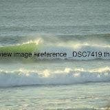 _DSC7419.thumb.jpg