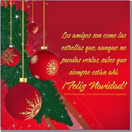 navidad (157)