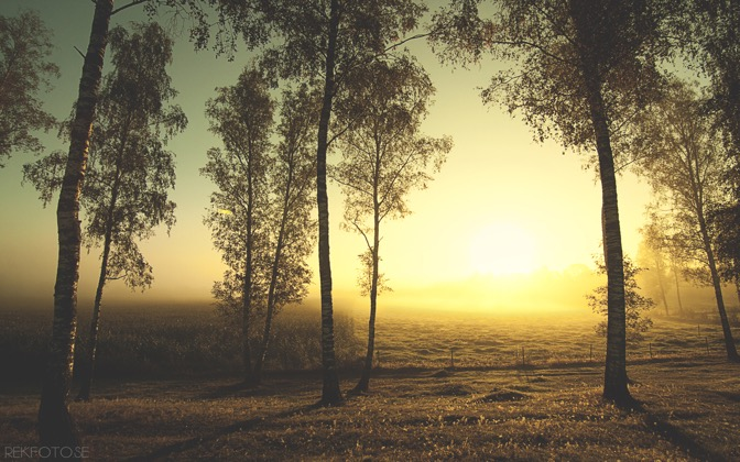 Painted Land of Sun by rekfoto.se1