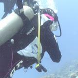 Bonaire 2011 - PICT0037.JPG