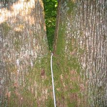 Taborjenje, Lahinja 2006 1.del - IMG_4387.JPG