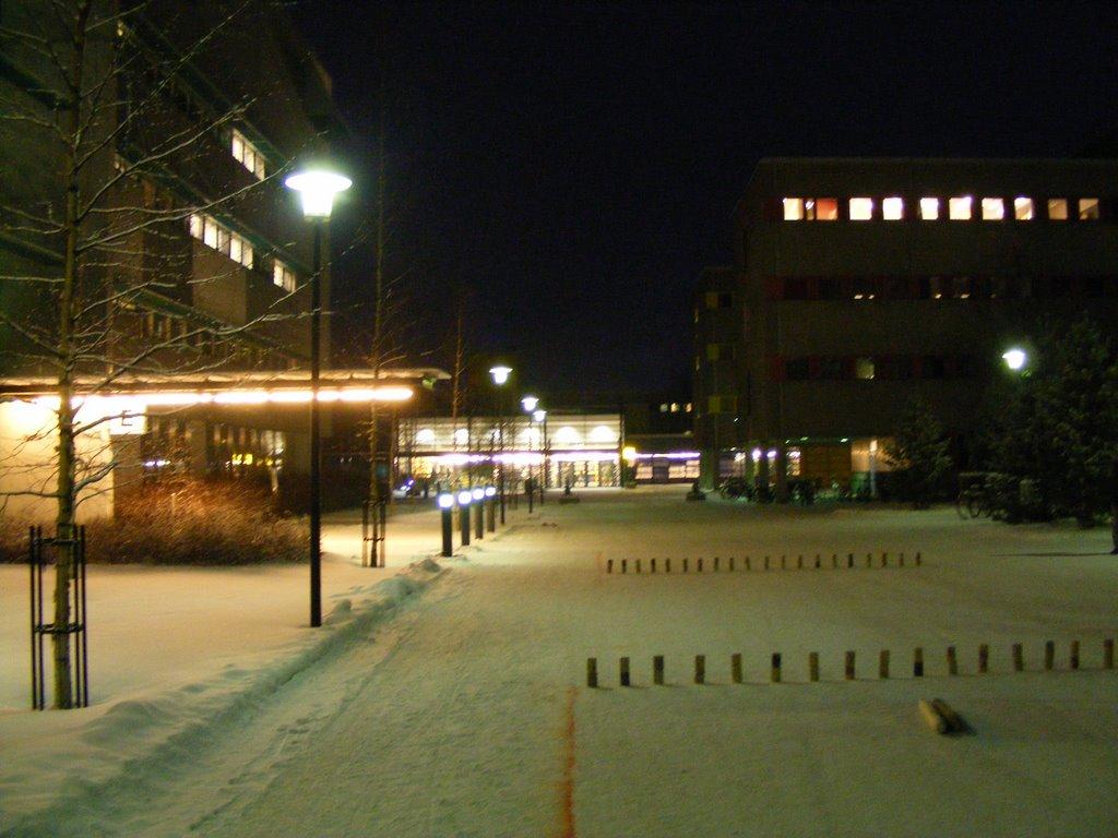 OLuT Kyykkä 2009 - DSCF0952.JPG