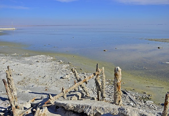 Bombay Beach1
