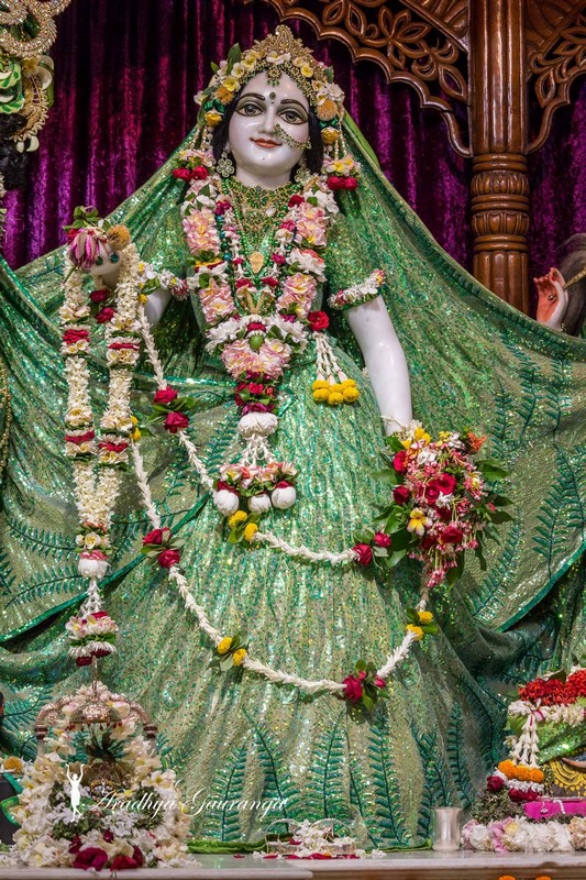 ISKCON Mayapur Deity Darshan 08 April 2016 (12)