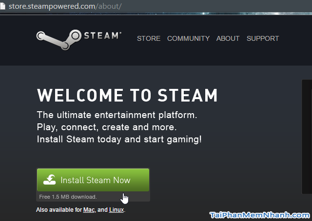 Nhấn Install Steam Now để tải Steam