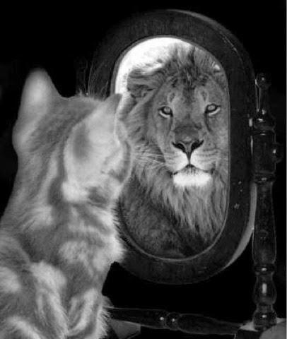 El reflejo cuentos dormidoz - Que pasa si se rompe un espejo en casa ...