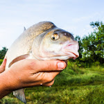 20140624_Fishing_BasivKut_012.jpg