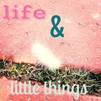 Life & Little Things