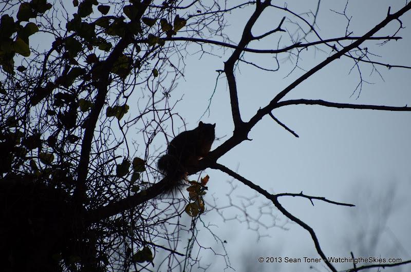 01-05-13 Arbor Hills Nature Preserve - IMGP3958.JPG