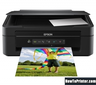 Reset Epson XP-205 printer with Epson reset software