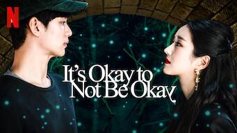 It's Okay to Not Be Okay (Season 1) [Hindi Dubbed (ORG) + Korean] Dual Audio |  480p [NF KDrama Series]