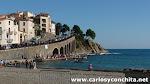 11-10-2015 - Fiestas vendimia (Banyuls sur Mer)