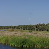 04-06-12 Myaka River State Park - IMGP4441.JPG