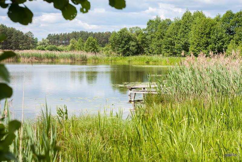Озеро Велике біля села Облапи