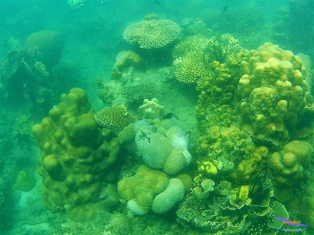 Pulau Harapan, 16-17 Mei 2015 GoPro  17