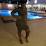 Barbara Boachie's profile photo