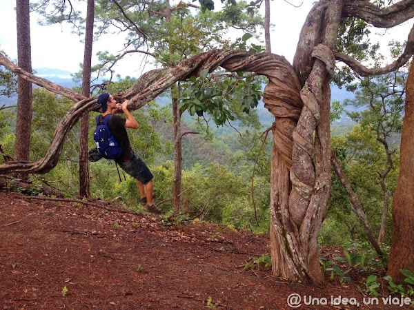 trekking-norte-tailandia-minorias-etnicas--unaideaunviaje.com-10.jpg