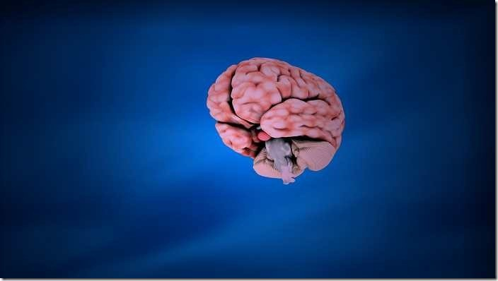The interpretation of brain in Islam about dream