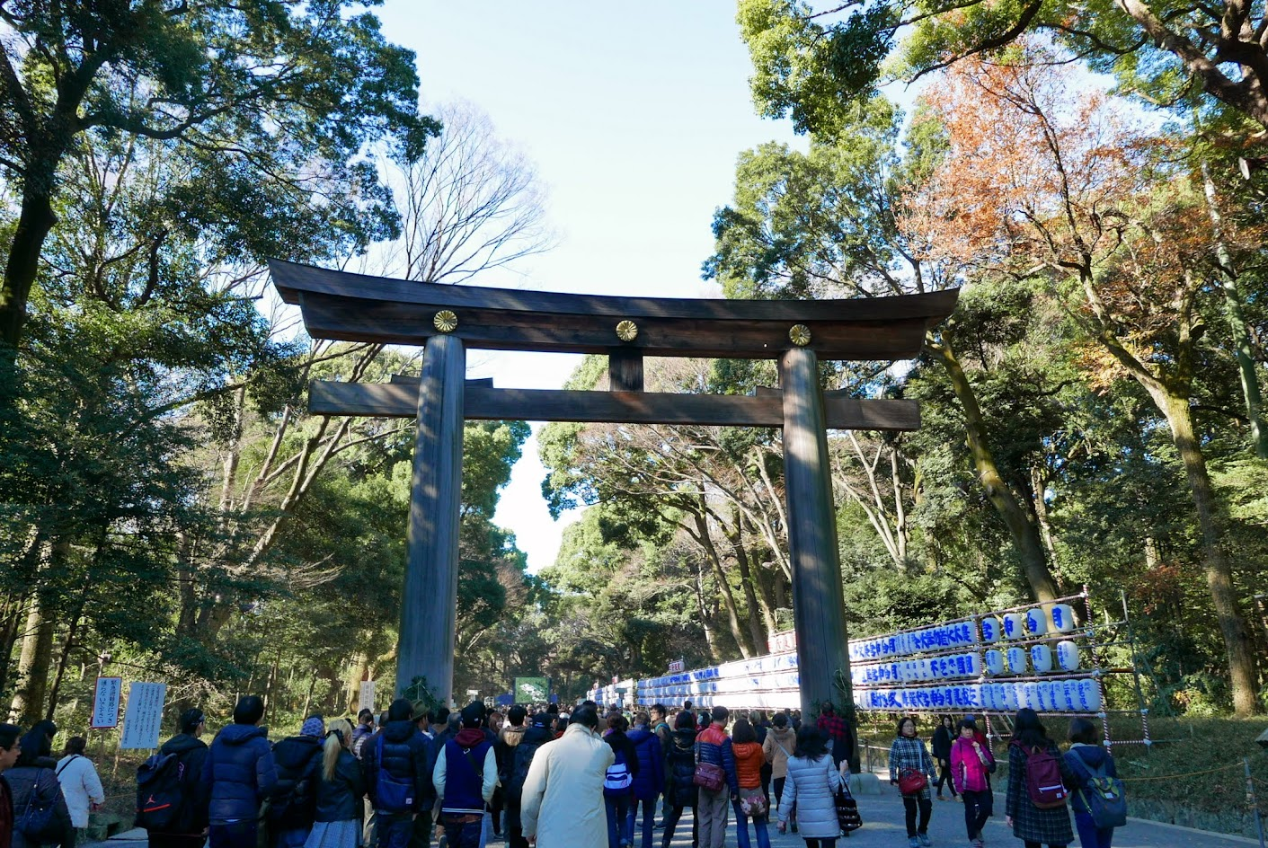 The most famous hatsumode spot in Tokyo is Meiji Jingu Shrine, which has over three million visitors over the first three days of the year. Look at all the people you can see on the path in front of us as it turns... this is not the only entrance to Meiji Shrine, but it is the main one.