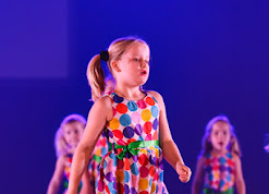 Han Balk Voorster Dansdag 2016-4426-2.jpg