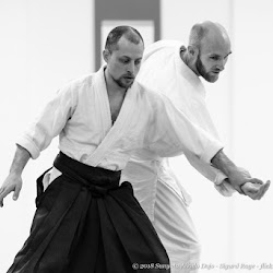 Beginners and Intermediaries practice: kote gaesh and kaiten nage