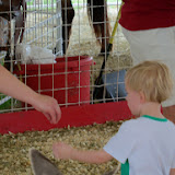 Fort Bend County Fair 2014 - 116_4277.JPG