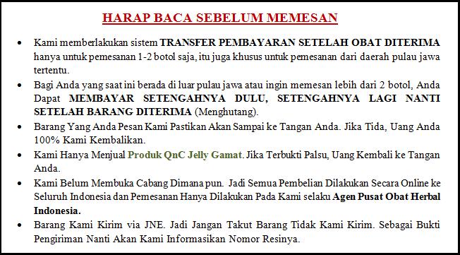 Khasiat dan Manfaat Jelly Gamat QnC Untuk Ibu Hamil