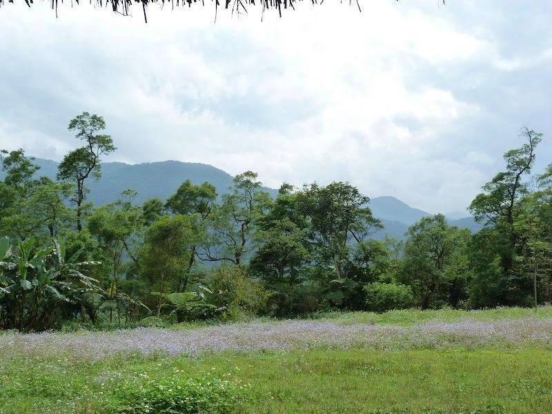 TAIWAN A cote de Luoding, Yilan county - P1130627.JPG
