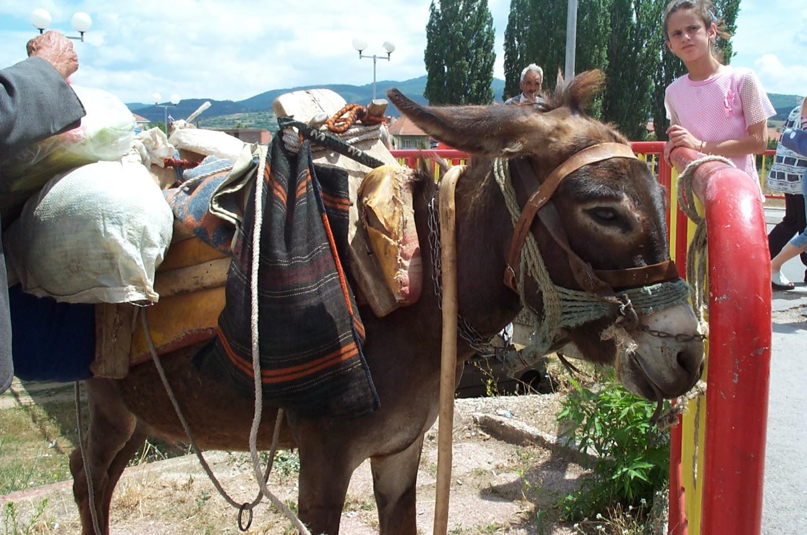 ZLET, Makedonija - makedonce%2B081.jpg