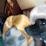 Misha Tutt's profile photo