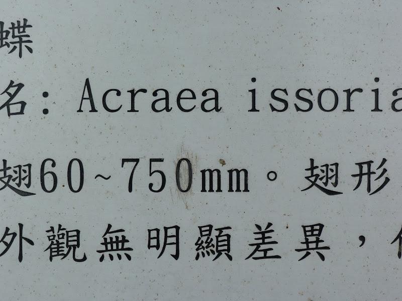 TAIWAN Dans la region de Hualien. Liyu lake.Un weekend chez Monet garden et alentours - P1010646.JPG