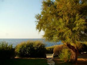 Photo: #009-Vue de la chambre du Club Med de Sant'Ambroggio