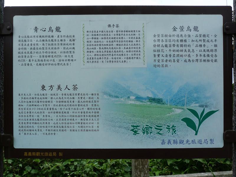 TAIWAN  Dans la region d ALISHAN - P1130885.JPG