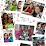 Chandrima Roy's profile photo