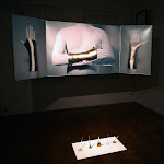 Mihai Zgondoiu - The Artist's Golden Hand, 5 - 20 aprilie 2013 @Aiurart. Curatoare: Olivia Nițiș