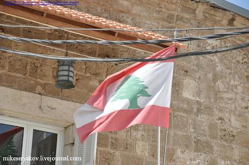 страна с кедром на флаге