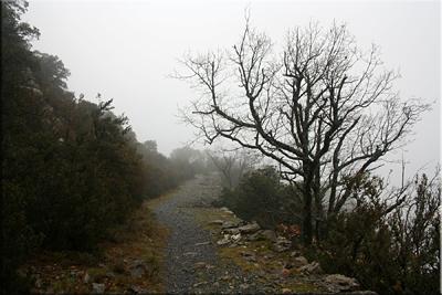 Caminando por el tramo más ancho y mejor conservado de la Calzada Romana