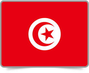 Tunisian framed flag icons with box shadow