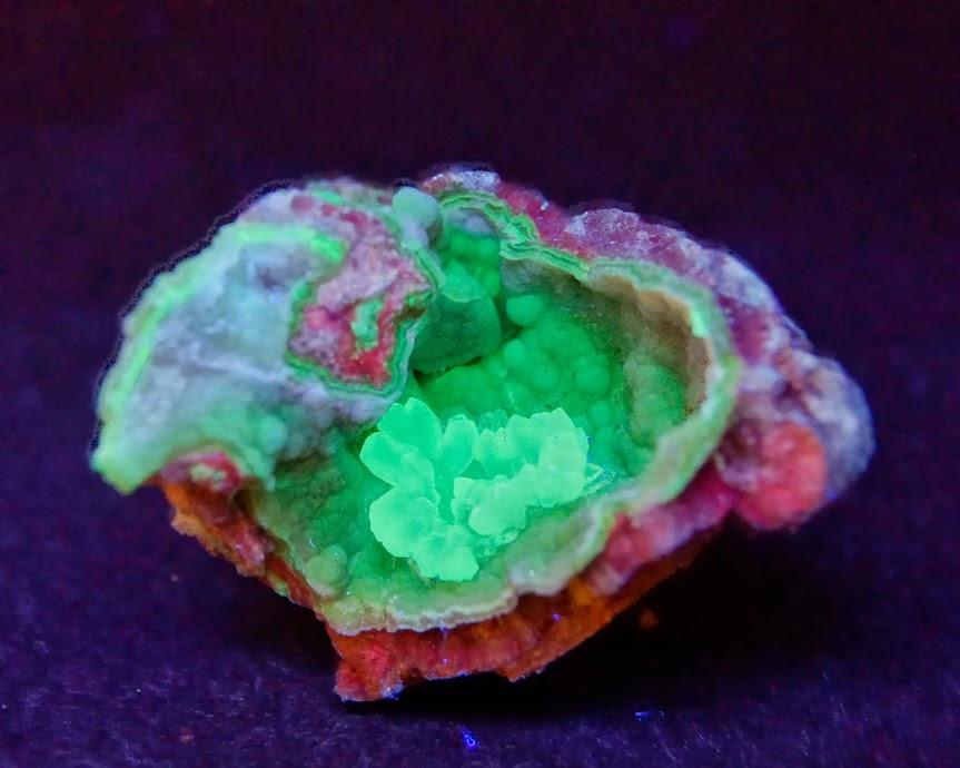 Colección de Minerales Fluorescentes - Página 3 _DSC5444