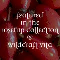 http://wildcraftvita.blogspot.it/2012/10/rosehip-collection-25-things-to-do-with.html