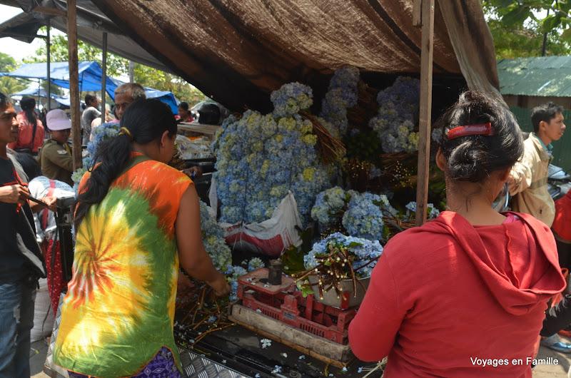 Mengwi market