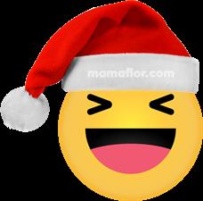 Emoji Haha Equisde