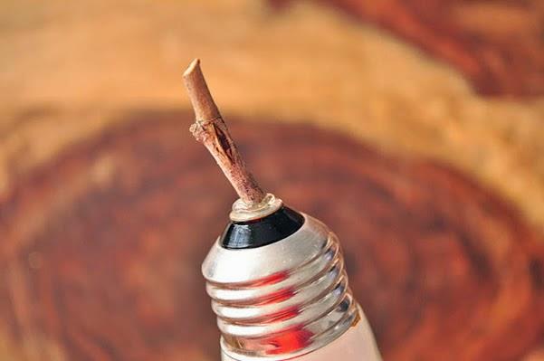 Enfiar o graveto na lâmpada