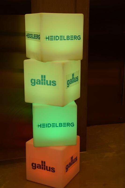 Heidelberg Gullus- WestIn - 11