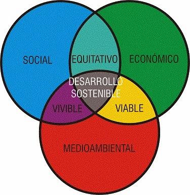 Social Taste, un modelo de negocio sustentable con fin social