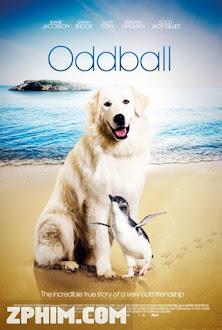 Chú Chó Oddball - Oddball and the Penguins (2015) Poster