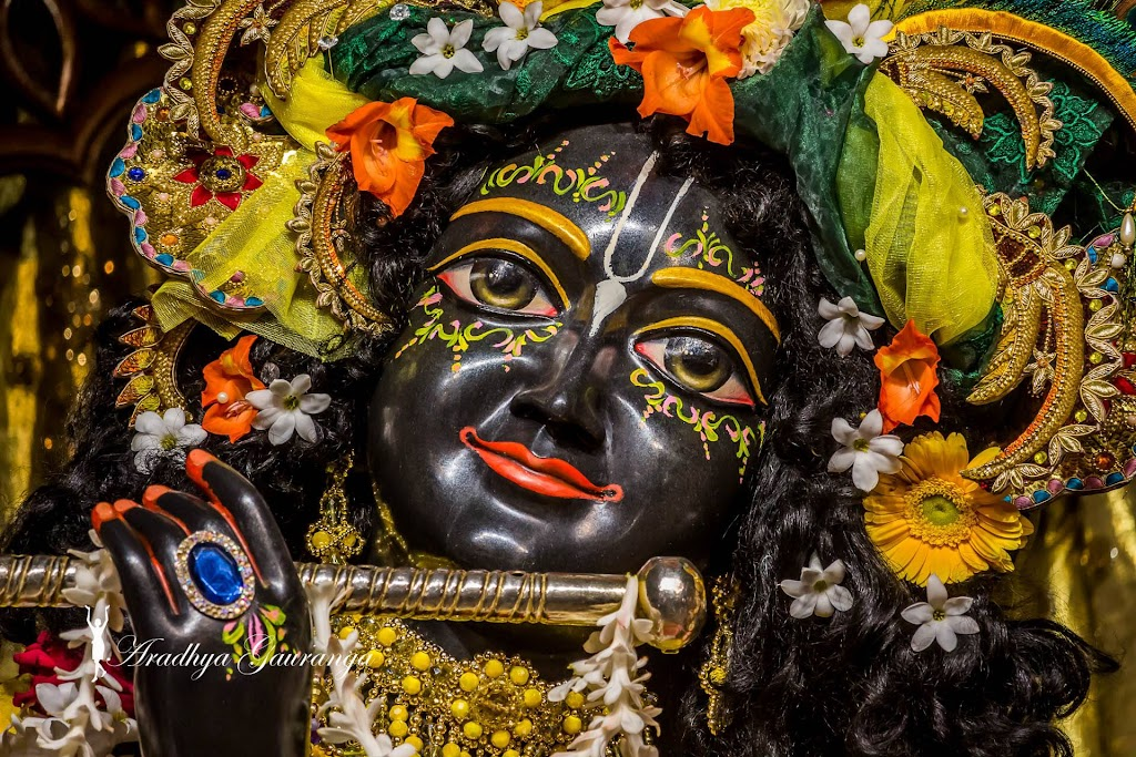 ISKCON Mayapur Deity Darshan 18 Jan 2017 (9)