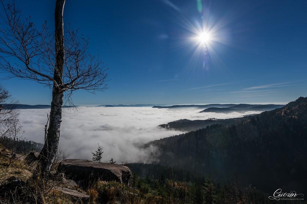 Au dessus des nuages à 961m SEBY1395-Panorama